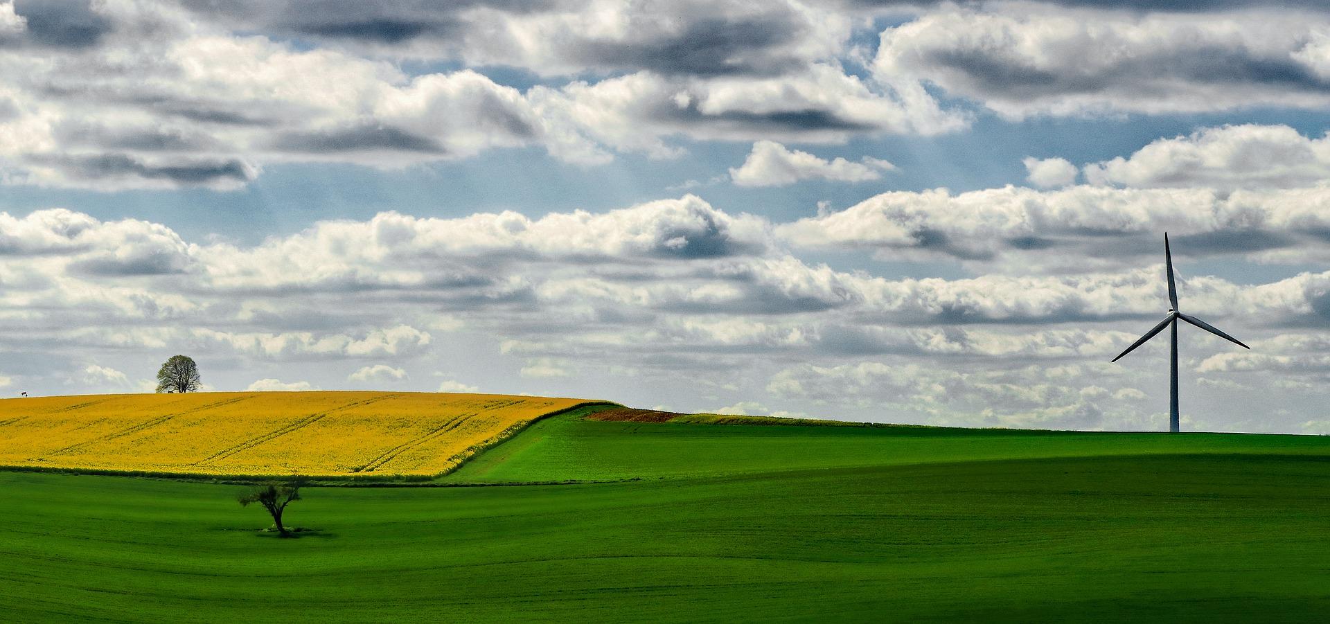 fields-2233019_1920